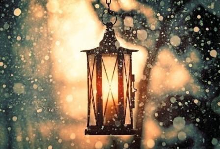 beautiful-christmas-cute-fashion-light-Favim.com-242930